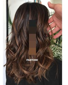 New hairstyle and color ideas for 2019 - Just Trendy Girls: ideas . - Frisuren Haare Schritt New hairstyle and color ideas for 2019 – Just Trendy Girls: ideas … Brown Hair Balayage, Hair Color Balayage, Haircolor, Bayalage, Brown Hair With Lowlights, Brown Hair With Caramel Highlights Dark, Mocha Brown Hair, Balayage Diy, Brunette With Caramel Highlights