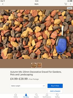 Autumn Mix great for Autumn Arts and crafts