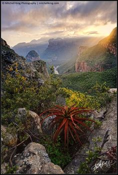 Blyde River Canyon, South Africa by Mitchell Krog