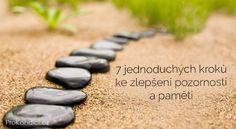 Abstract stone path on sand on a background of a grass Poster Feng Shui, Stone Path, Happy Trails, Pathways, Stepping Stones, Grass, Scenery, Finding Yourself, Abstract