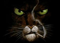Blacksad. Increible comic. Pin Up, I Love Cats, Comic Strips, Panther, Funny Cats, Deviantart, Gallery, Drawings, Illustration
