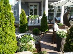 puutarha,patio,terassi,istutukset,pihan oleskelupaikka