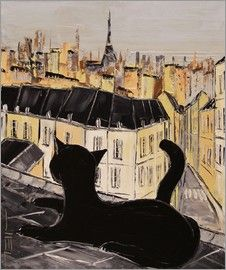 Black cat on the roofs of Paris
