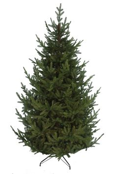 Product Features Size: Number of Branch Tips: 5734 PE/PVC branch tips Tree Width: diameter Foliage colour: Dark green Realistic look: A mix of ultra-realistic plastic moulded tips, with traditional PVC tips to fill out any gaps Easy ass Christmas Tree Storage Bag, Types Of Christmas Trees, Christmas Lights, Christmas Crafts, Merry Christmas, Christmas Decorations, Liverpool Cathedral, Marine Aquarium