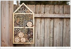 Another sweet bug hotel