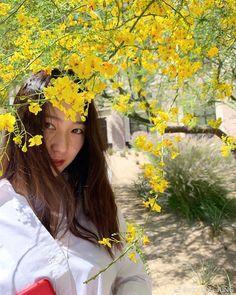 ในภาพอาจจะมี หนึ่งคนขึ้นไป, ดอกไม้, ต้นไม้, ต้นพืช, สถานที่กลางแจ้ง และธรรมชาติ Krystal Fx, Jessica & Krystal, Jessica Jung, Krystal Instagram, Instagram Posts, Aesthetic Photo, Aesthetic Girl, Selfies, Krystal Jung Fashion