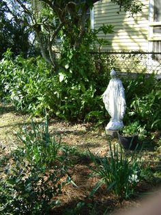 Finally Unlock The Secret To Successful Gardening!