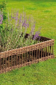lattice willow hurdles