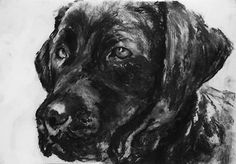 Custom dog art, personalized dog drawing, charcoal dog portrait, drawing from p…… visit oscarjetson.com to see cool dog art oscarjetson.com