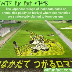 WTF Facts : funny, interesting & weird facts — The awesome art of rice paddies: Inakadate...