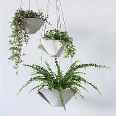 A personal favorite from my Etsy shop https://www.etsy.com/listing/270846597/fold-bowl-hanging-planter