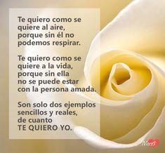 170 Ideas De Poemas De Amor Poemas De Amor Poemas Poemas Cortos