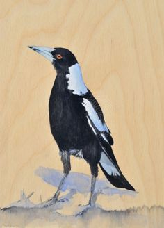Maggies in the Morning Sun by Lydia Paton. Paintings for Sale. Bluethumb - Online Art Gallery