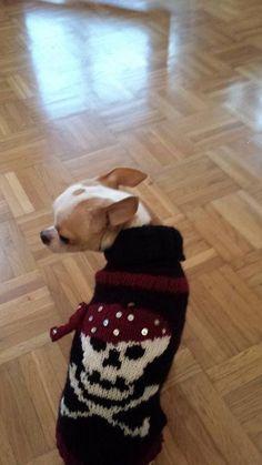 https://www.facebook.com/pages/Pez-Iko-Hundepullover-Handgestrickt-und-vieles-mehr/806960432664237?ref=aymt_homepage_panel