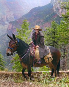 – Although the days of the Wild West have faded into legend, one Abingdon native is the Tri-Cities' version of Annie Oakley. Horses And Dogs, Animals And Pets, Cute Animals, All The Pretty Horses, Beautiful Horses, Cowgirls, Draft Horses, Dressage Horses, Rodeo