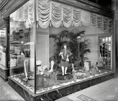 "Washington, D.C., 1926. ""National Hosiery Week. Erlebacher window, F Street."" Among the Blue Moon shades on display: Flesh, Blond, Peau, Orchid, Gravel and ""Jenny."" National Photo Company Collection glass negative."