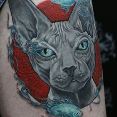 тату сфинкс tattoo cat sphinks
