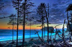 beautiful & blue.  (Sorta like Survivor, lovely but desolate)