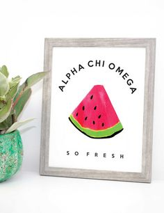 Alpha Chi Omega Watermelon