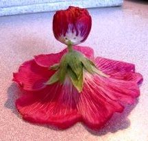 I remember my dad making Hollyhock dolls for me out at Aunt Tishie's. Unusual Flowers, Pretty Flowers, Best Memories, Childhood Memories, Hollyhocks Flowers, Clock Flower, 1970s Childhood, Mother Teach, Sweet Lady