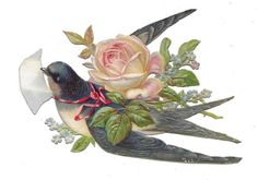Victorian Die Cut Scrap A Swallow Flying with Rose Vintage Tags, Vintage Greeting Cards, Vintage Ephemera, Vintage Prints, Bird Pictures, Vintage Pictures, Bluebird Vintage, Illustrations, Art Journal Inspiration