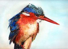 Kingfisher, Watercolour, 12 x 16 inches Watercolor Bird, Watercolour Painting, Watercolours, Kingfisher Bird, Little Birdie, Easter Art, Illustrations, Bird Art, Digital Art