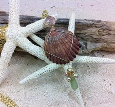 Wire Wrapped Beach Jewelry Sea Shell Pendant by SeaGlassVisions, $20.00