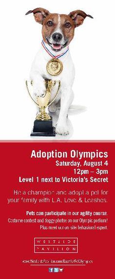 Adoption Olympics LA Love & Leashes