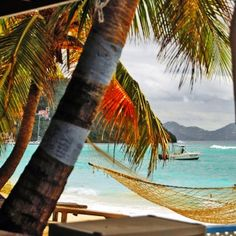 OLD MANGO - A Photo Guide to the Virgin Islands