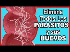 ¿matar a los parásitos dentro del cuerpo te puede hacer sentir mal