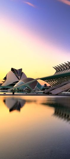 The City of Arts and Sciences in Valencia, Spain; that's where I would be studying!!!!