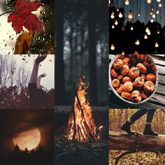 Autumn Collage 04