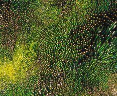 glasswoork by shayna leib