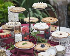 As Sweet As Pie – Serving Pie at your Wedding - Buehler's Catering featured in Today's Bride magazine! Unique Cakes, Creative Cakes, Wedding Desserts, Wedding Cakes, Catering, Traditional Cakes, Cupcakes, New Cake, Easter Weekend