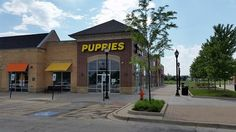 Naperville: The puppy mill outlet capital of America.  People Speak Up!  Say No To Puppymills!  Adopt from a shelter, rescue or adopt a homeless dog from Dog Patch Pets in Naperville.  #pets #care #puppy #dogs #puppymills #freedom #educate