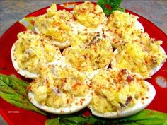 Deviled Eggs Delight (Atkins Friendly - Low Carb) from Food.com: I got this recipe online somewhere. It is really good and very Atkins friendly!