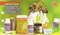 Pola Hidup Sehat: Produk- Produk Kesehatan dari Perlebahan - HDI - Four Stars (Bee Pollen, Bee Propolis, Royal Jelly, Madu Clover Honey)