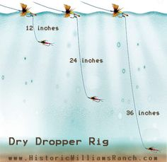 This 'dry dropper' nymph rig is deadly for trout…one of my favorites…. – JJA This 'dry dropper' nymph rig is deadly for trout…one of my favorites…. This 'dry dropper' nymph rig is deadly for trout…one of my favorites…. Trout Fishing Tips, Fishing Rigs, Fishing Knots, Best Fishing, Fishing Stuff, Going Fishing, Ice Fishing, Walleye Fishing, Fishing Guide