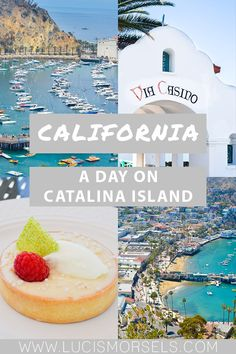 We had such a great time on Catalina Island, I hope we continue to go back and hopefully for more than just a day. But if you only have one day, here is what to do on Catalina Island to get a good taste of the the island in the city of Avalon… Avalon California, California Coast, California Travel, Travel Usa, Travel Pics, Vacation Trips, Vacation Spots, Travel Couple, Plan Your Trip