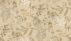 Penglai Soft Gold (NCW4182-05) - Nina Campbell Wallpapers - Inspired by Chinese ink wash paintings, and named after an ancient legend set in the garden, this wallcovering offers a glimpse of informality in the Imperial Garden. Birds play cheerfully amongst blossom laden branches. Shown here in soft gold. Other colourways are available. Please request a sample for a true colour match.