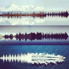 Waveforms everywhere!!!!