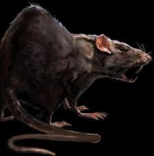 Dishonored - Rat concept art