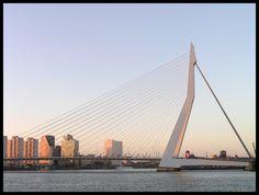Erasmus bridge sun set - Rotterdam, Zuid Holland