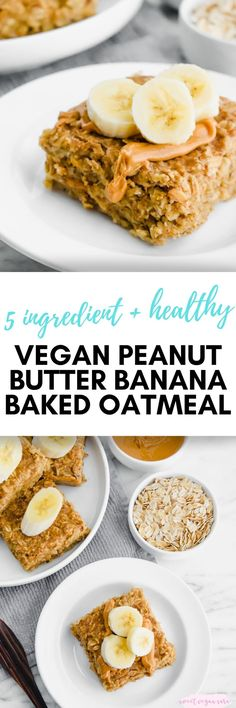 This vegan peanut butter banana baked oatmeal is great for meal prep to have a healthy breakfast ready to go for the week, made with just 5 healthy ingredients. #veganpeanutbutterbananabakedoatmeal #veganbakedoatmeal #bakedoatmeal #peantubutter #breakfast #healthybreakfast #healthyveganbreakfast #veganbreakfast #glutenfree #plantbased Healthy Cookie Recipes, Delicious Vegan Recipes, Healthy Baking, Raw Food Recipes, Vegan Desserts, Free Recipes, Clean Breakfast, Healthy Vegan Breakfast, Plant Based Breakfast