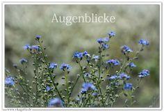 * Augenblicke der Inspiration * Ekagatta - Weg der Achtsamkeit e.V. * ZEN * Meditation * Wiesbaden * www.ekagatta.de