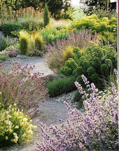 Natural Landscape Re Imbrace The Messy Garden Paths in Natural Landscaping Ideas Meadow Garden, Dry Garden, Garden Paths, Prairie Garden, Indoor Garden, Natural Landscaping, Modern Landscaping, Garden Landscaping, Landscaping Ideas