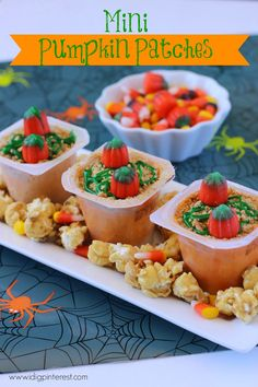 These Mini Pumpkin Patches using snack pack pudding cups are perfect for a party or just a quick and tasty snack, and fun to make for Halloween! Snack Pack Pudding, Pudding Cups, Kid Recipes, Holiday Recipes, Harvest Party, Mini Pumpkins, Yummy Snacks, Halloween Treats, Kids Meals