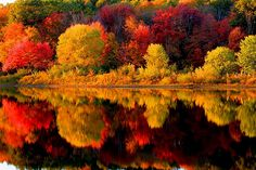 The glory of autumn's colors is reflected in the still water of the lake.
