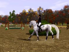 Sims 3 Horses Jumping | day 3 show jumping rollback approaching jump 5a