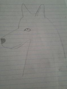 Not the best artist,but this is what i drew today
